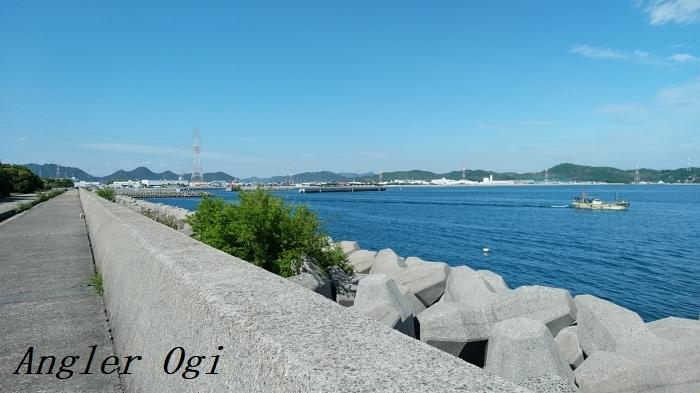 こちらは灘浜から妻鹿漁港を見ています。