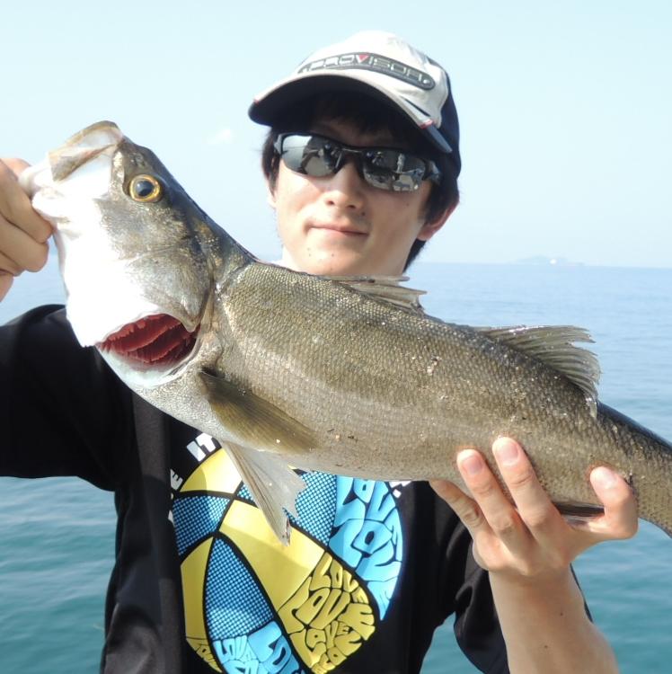 Angler Ogi