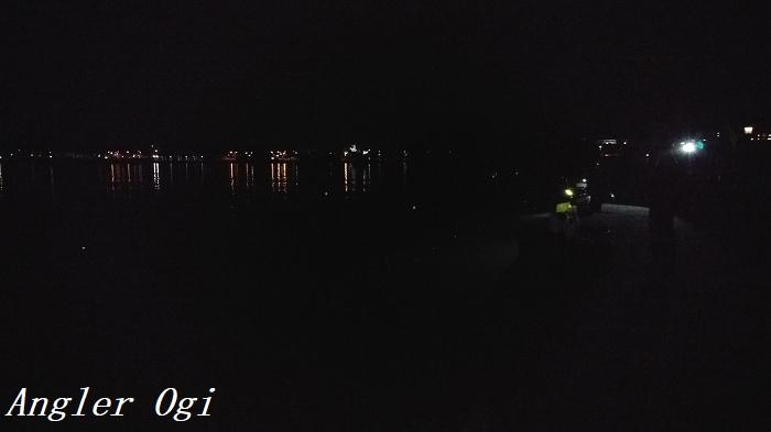 淡路島の津名港。夜は真っ暗です。